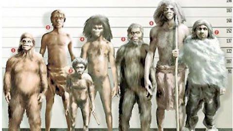 Creacionismo vs Evolucionismo en 8 cuestiones esenciales