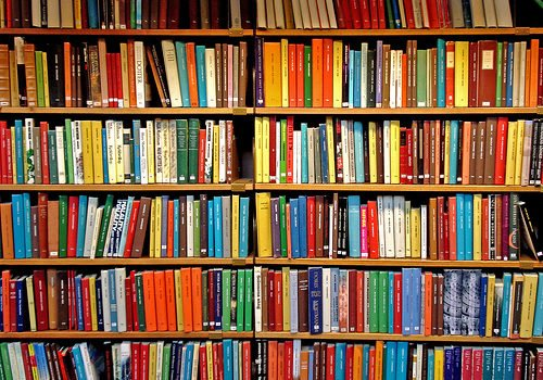 Reflexiones sobre los libros de empresa