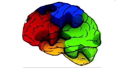 Negociación creativa: las trampas de la mente