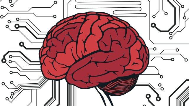 Cerebro y problemas
