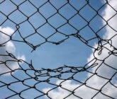 Como escapar de la prisión de los precios