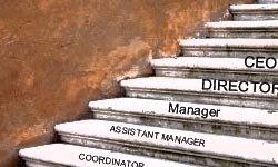 Desafíos del nuevo management: Jerarquía versus Creatividad e Innovación.