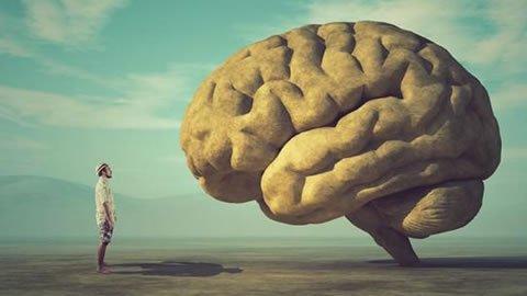 Las trampas mentales del liderazgo